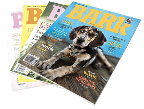 The Bark Subscription