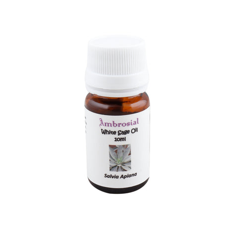 Ambrosial White Sage Essential Oil in Delhi india