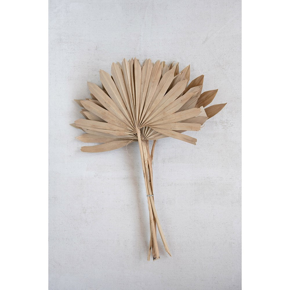 Dried Natural Palm Bunch, Sun Cut (6 pieces)