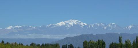 Andes from Lujan de Cuyo