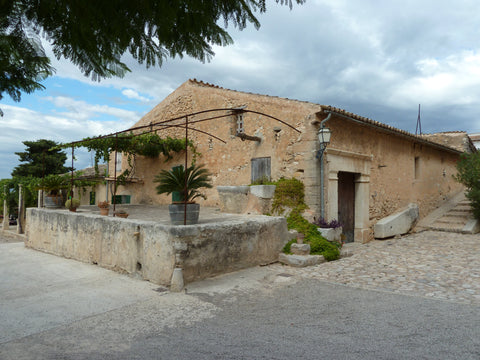An old building at Bodegues Ribas