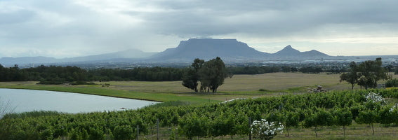 View from de Grendal