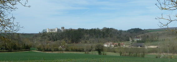 A great view for a picnic lunch between Sancerre and Chablis