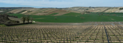 View from the hill of Sancerre