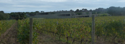 Terra Remota winery blended into the landscape