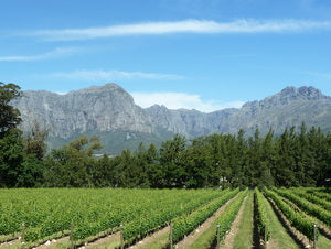 View from Thelema tasting room