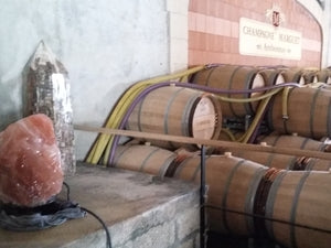 Marguet winery