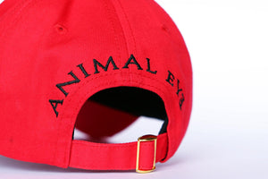 Classic. Panda Embroiered Baseball Cap. RED