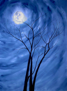 Winter Trees Full Moon