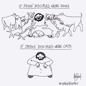 Disciples Cats and Dogs