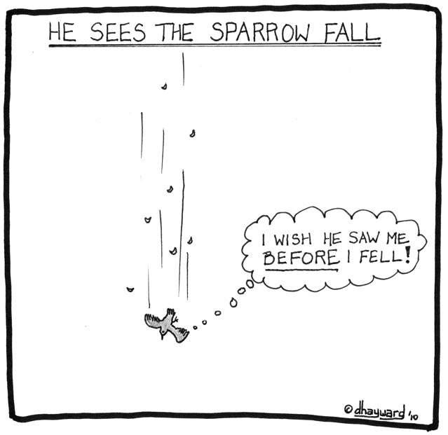 cartoon: sparrow