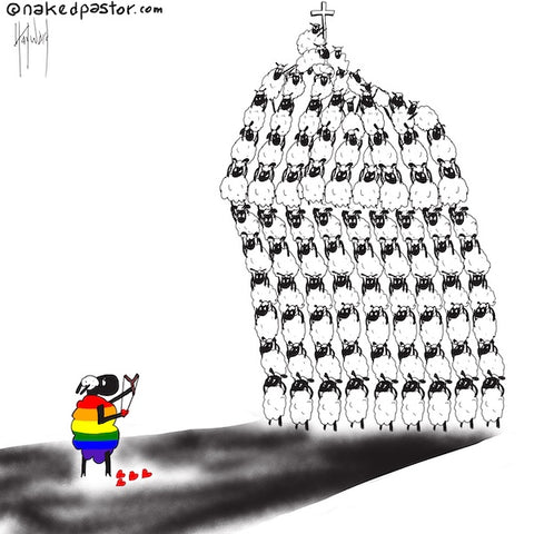 LGBTQ David and Goliath CARTOON