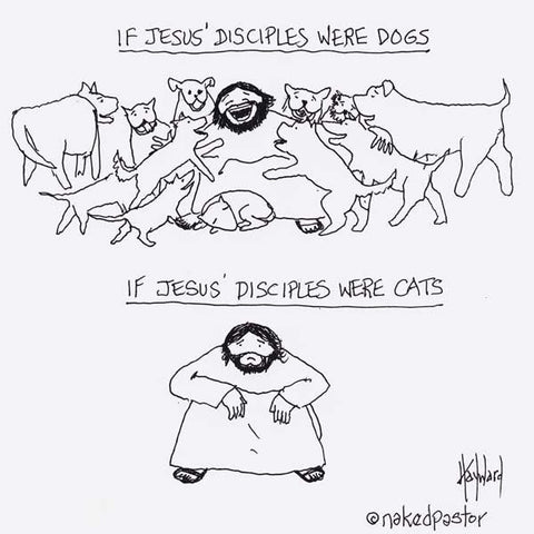 Disciples Cats and Dogs CARTOON