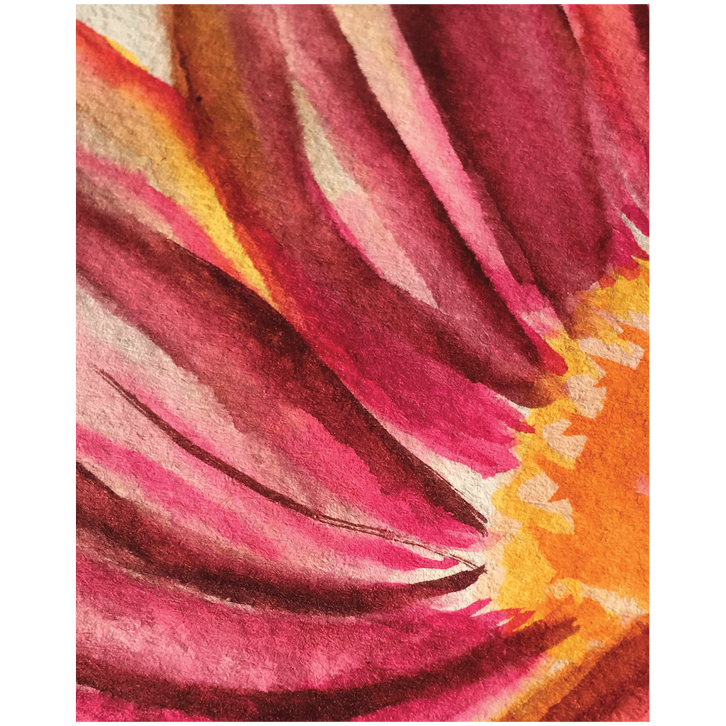 Macro Mexican Sunflower Wall Art Print in Various Sizes for Home Decor in Orange and Pink Hues