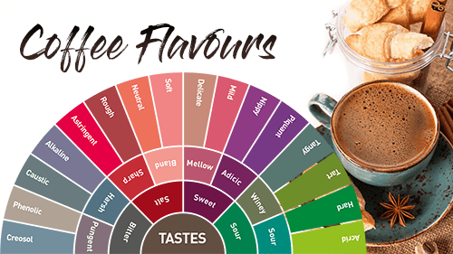 Different Coffee Flavours