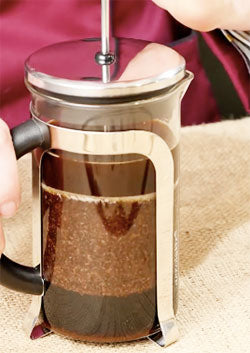 Making French Press Cold Brew