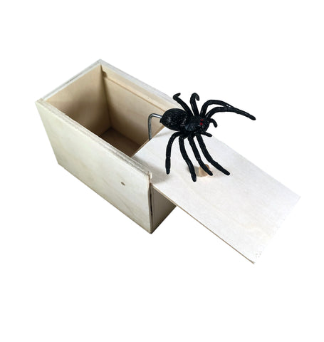 Spider in the box