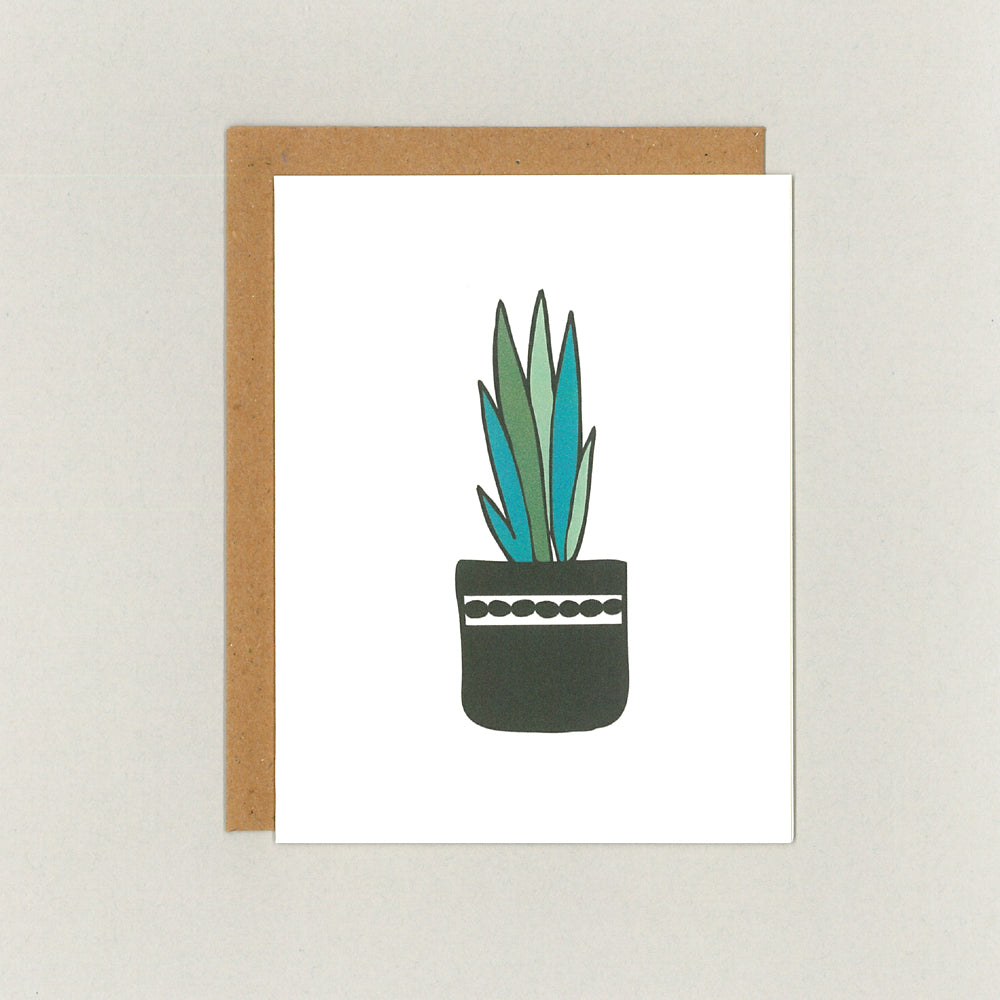 Everyday Cards - Succulents