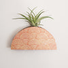 Mod Curves Dome Wall Vase Planter