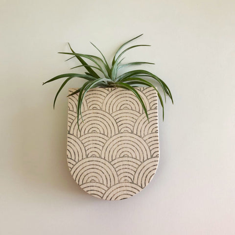 Mod Curves Pocket Wall Planter Vase