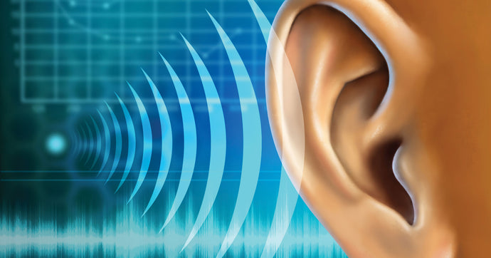 Astaxanthin use in prevention and reversal of Hearing Loss in CIHL