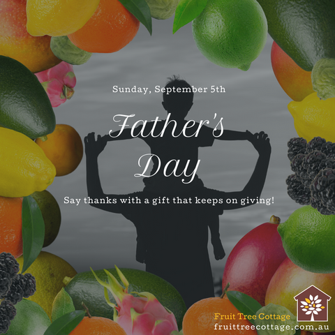 Fruit Trees are great gifts for Fathers Day