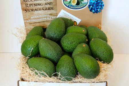 24 Large Hass Avocados - Fresh from the farm