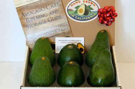 Sampler Gift Box - 3 Varieties of California Avocados - SOLD OUT