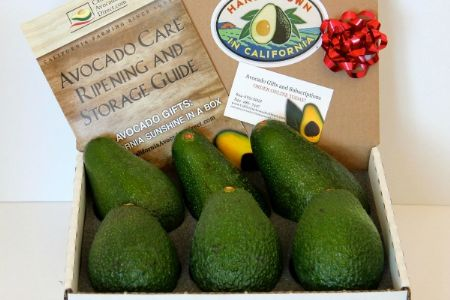 Two Varieties of Avocados - Best of Both Worlds