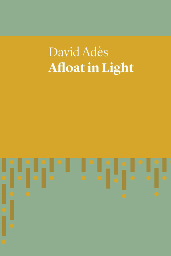 Cover of book Afloat in Light
