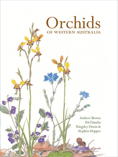 Orchids of Western Australia