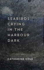Seabirds Crying in the Harbour Dark