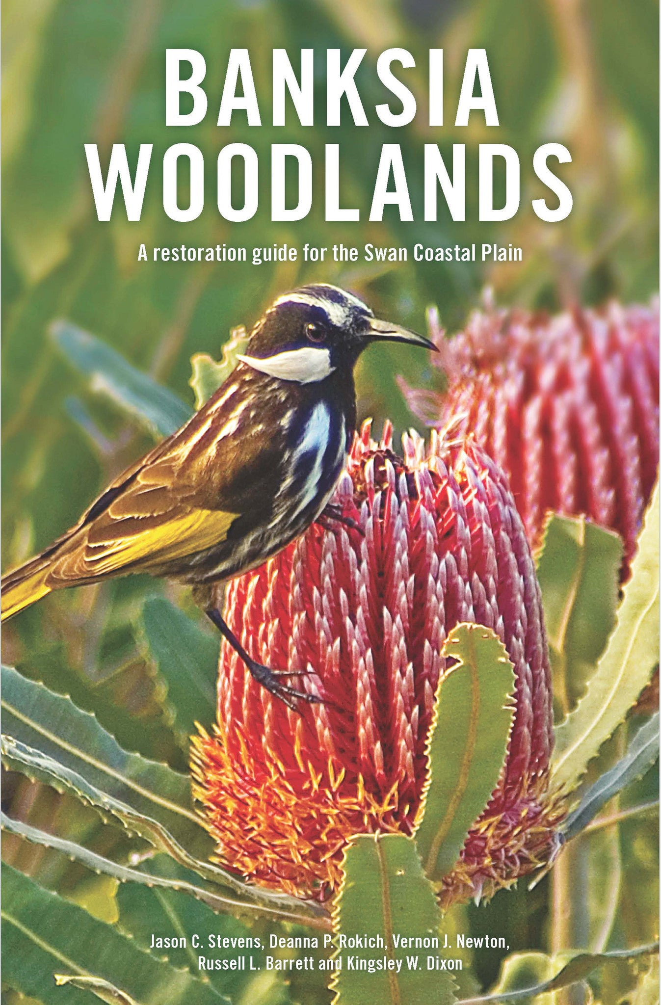 Banksia woodlands: A restoration guide for the Swan Coastal Plain