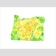 Load image into Gallery viewer, Oregon Grape fine art print