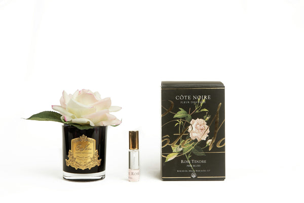 Cote Noire Perfumed Natural Touch Single Rose - Black - Pink Blush - GMRB02