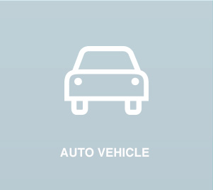 AUTO VEHICLE
