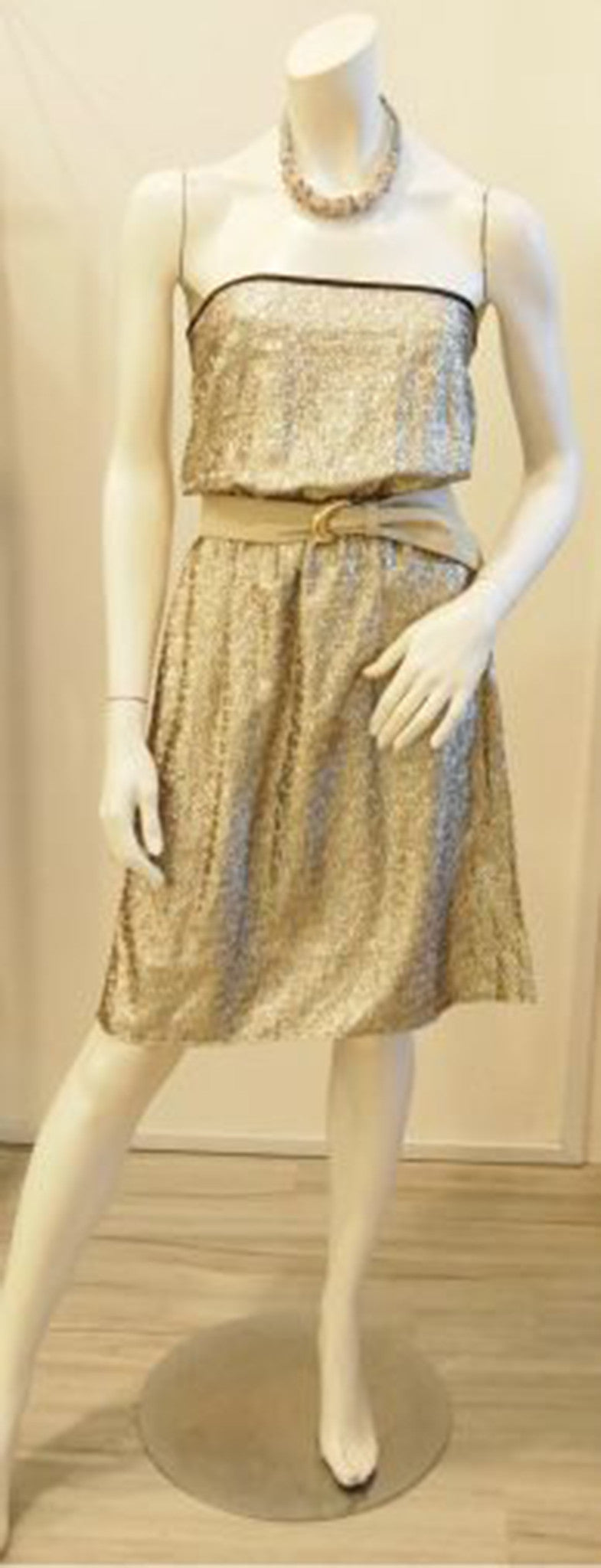 Dress Up Dress Down Gold Bustier Dress
