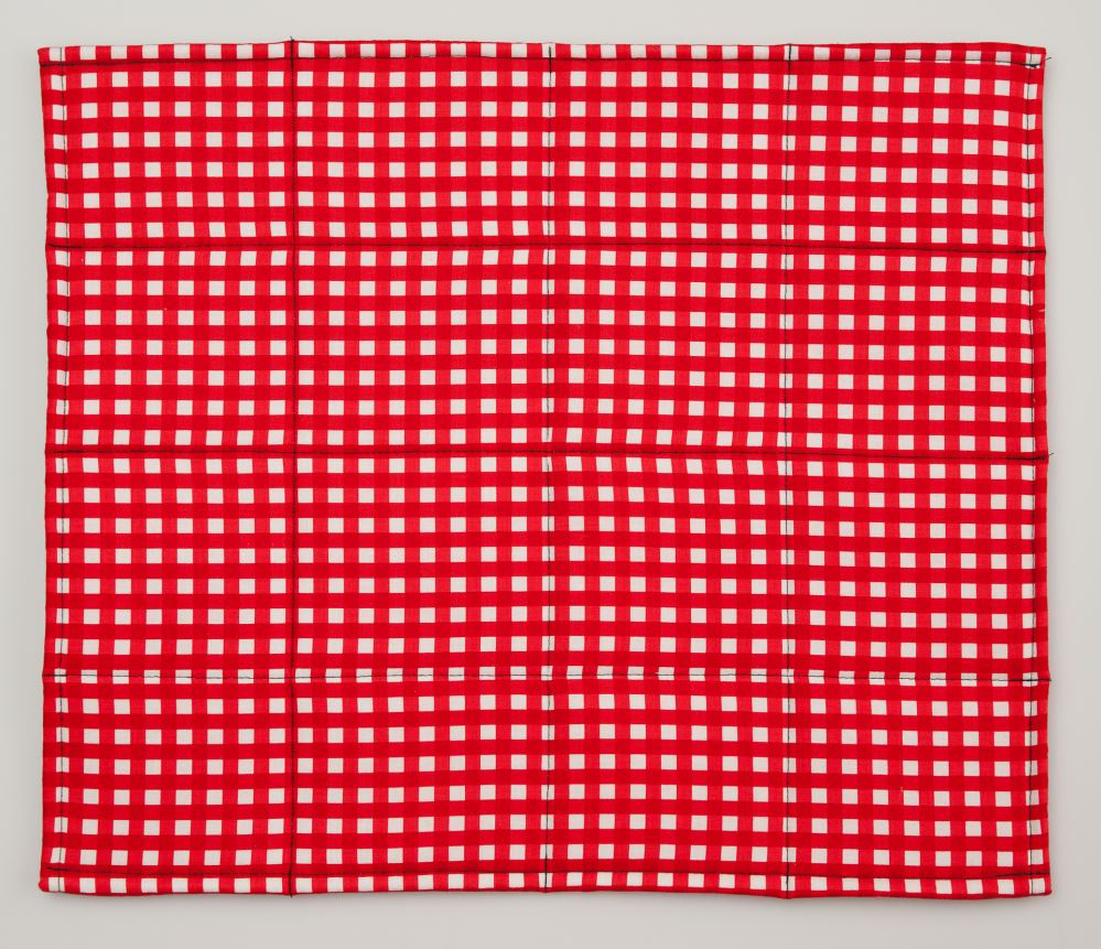 napkin_red_check_RGW7QIOU28DX.jpg
