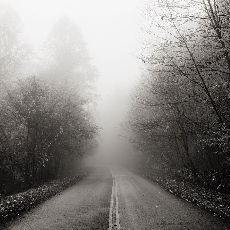 sepia landscape print, foggy road in Fall