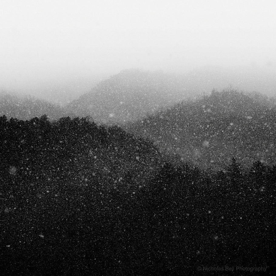 black and white fine art photography, landscape