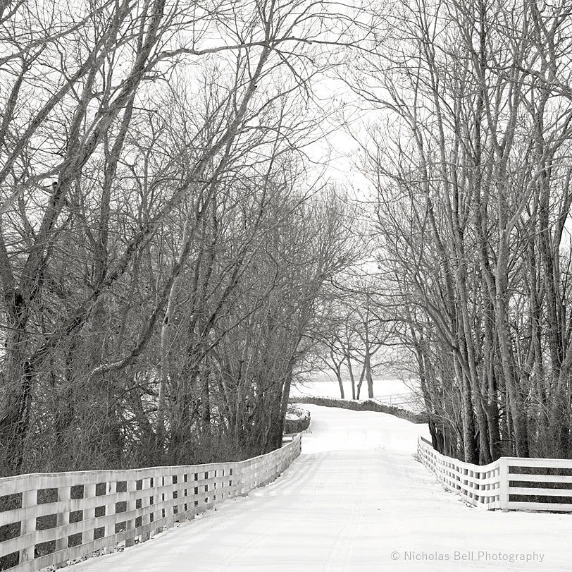 black and white photography prints, country road, winter