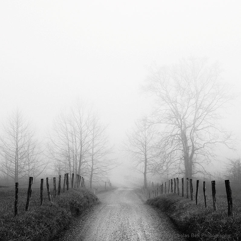 black and white photography print, Cades Cove