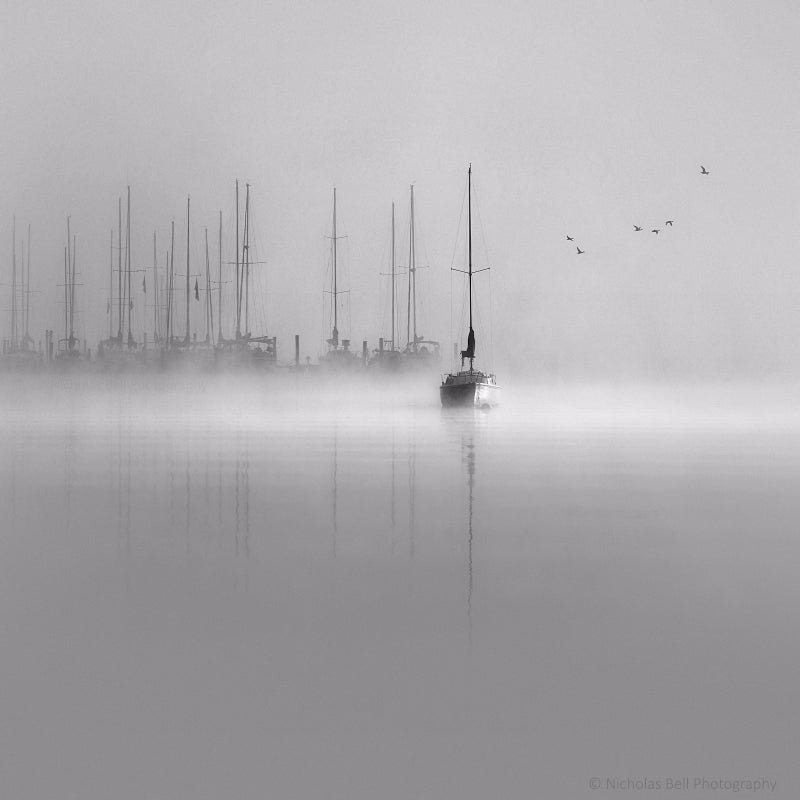 black and white sailboat photography prints