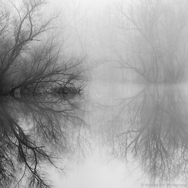 black and white lake photography print, Nicholas Bell
