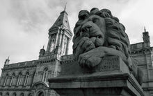 Load image into Gallery viewer, Peace the lion, Saltaire