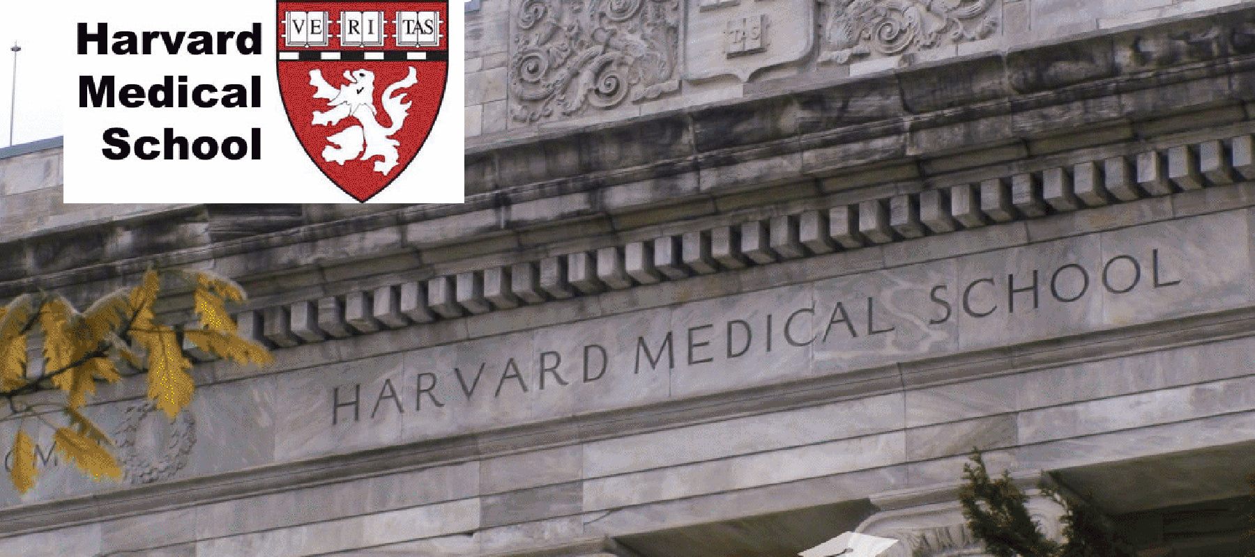 Harvard Medical School Weights In On Colon Cancer Screening Options Wi Pinnacle Biolabs Africa