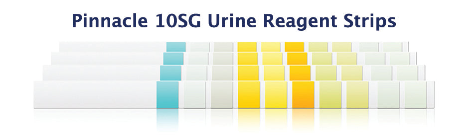 10 SG urine reagent strip