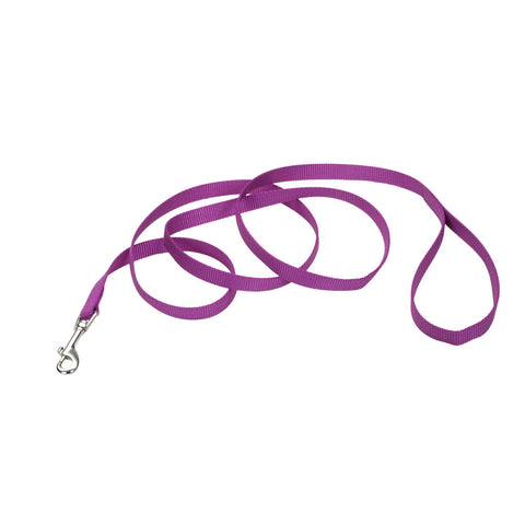 "Coastal single ply dog leash 5/8"" x 6 feet in orchid."