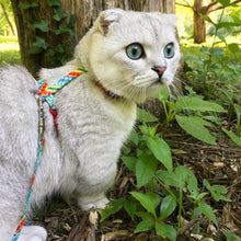 Load image into Gallery viewer, beautiful cat modeling coastal figure H adjustable cat harness