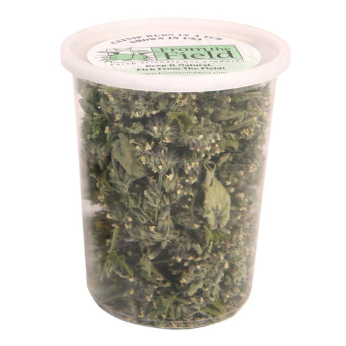 From the field catnip buds in a one ounce tub